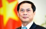 Phát huy vai trò đối ngoại phục vụ sự phát triển đất nước