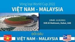 Đội hình đội tuyển Việt Nam trong trận đấu Malaysia