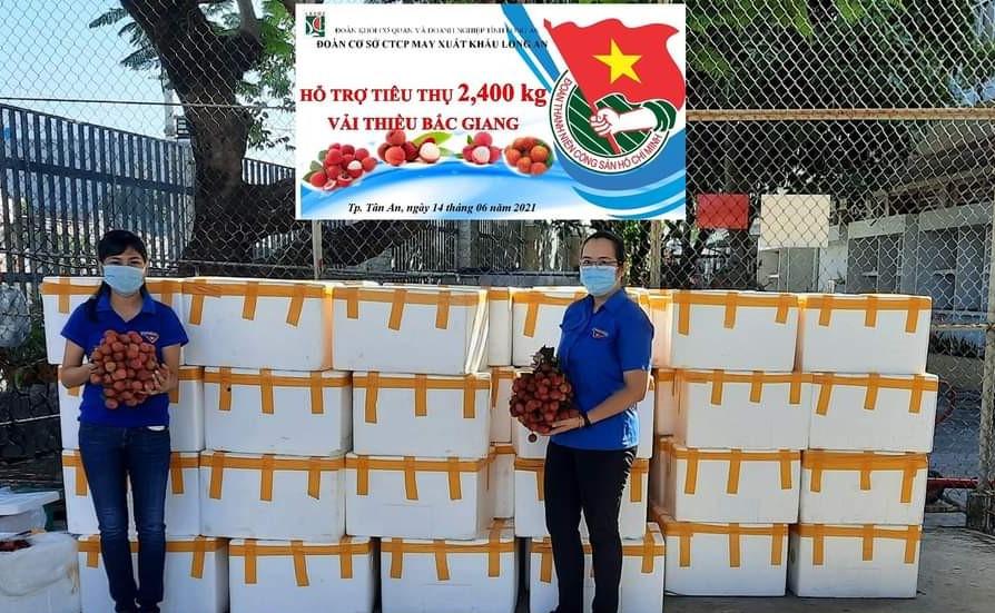 Đoàn Cơ sở Công ty Cổ phần May xuất khẩu Long An hỗ trợ tiêu thụ vải thiều cho nông dân Bắc Giang