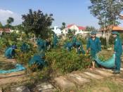 Long An dự kiến trồng ít nhất 7,32 triệu cây xanh