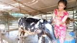 Tuyên Thạnh: Huy động nguồn lực giảm nghèo bền vững
