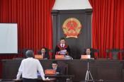 Bảo vệ công lý trong thực hiện Chiến lược cải cách tư pháp