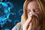 Đậu đen, đậu xanh – món ăn thuốc tốt cho người bệnh COVID-19
