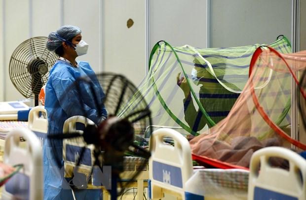Nhân viên y tế kiểm tra tình trạng bệnh nhân COVID-19 tại một bệnh viện dã chiến ở New Delhi, Ấn Độ. (Ảnh: THX/TTXVN)