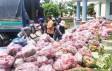 Nông dân xã Long Trì tặng người dân TP.HCM trên 200 tấn thanh long