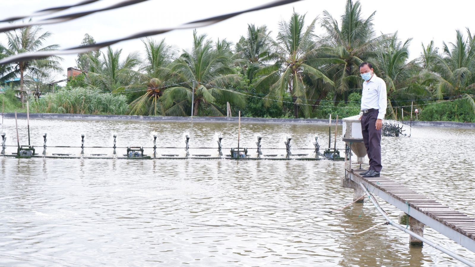 Shrimp-feeding farmers face many difficulties due to the temporary suspension of consumption at wholesale markets in Ho Chi Minh City