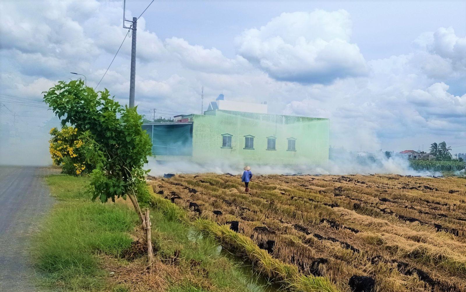 Việc đốt đồng sau mùa thu hoạch tiềm ẩn nguy cơ xảy ra hỏa hoạn