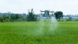 Cảnh báo về sức khỏe, môi trường do thuốc bảo vệ thực vật tại ĐBSCL