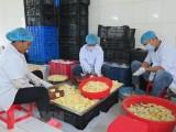 Dịch COVID-19: Tháo gỡ thủ tục hành chính cho doanh nghiệp nông nghiệp
