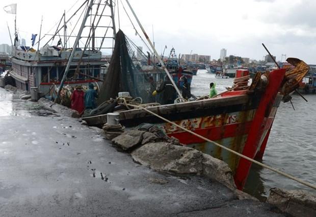 Lực lượng chức năng hỗ trợ ngư dân dọn dẹp ngư lưới cụ, chằng chống tàu thuyền tại Âu thuyền Thọ Quang (quận Sơn Trà). (Ảnh: Quốc Dũng/TTXVN)