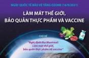 Ngày Quốc tế bảo vệ tầng ozone: Làm mát thế giới, bảo quản thực phẩm