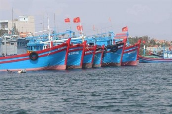 Vietnam works towards responsible, sustainable fishery sector