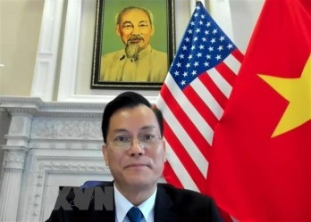 Vietnam welcomes US's practical assistance for Mekong nations: ambassador
