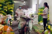 Nông dân ĐBSCL khổ vì giá phân bón tăng liên tục